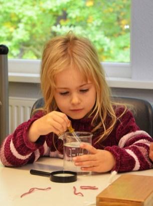 montessori-grundschule-hangelsberg_tag-der-offenen-tuer-2016_57