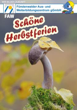 FAW_Schöne Herbstferien mit Fawi_2017