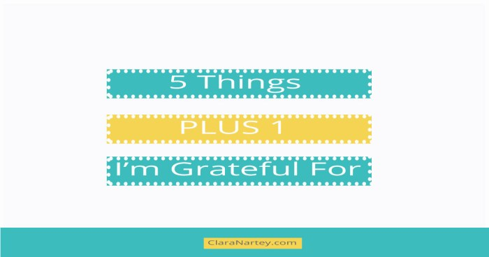 5 Things PLUS One I'm Grateful For