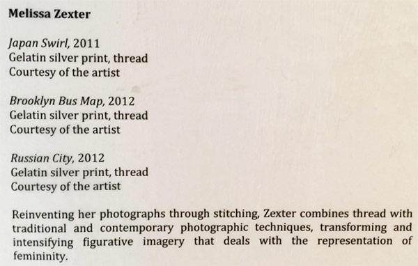 Melisa Zexter's Artist-Statement