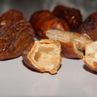 Dabino (dates) -benefits