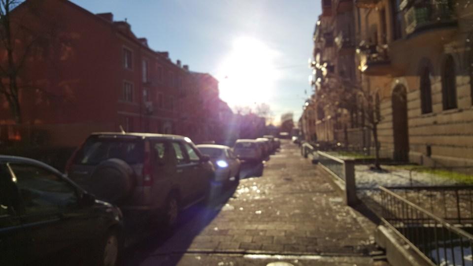 sunny walk