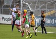 120619 Clooneys Lochlann Carey celebrates his goal during the Division 4 Hurling Clare Primary School Finals .Pic Arthur Ellis