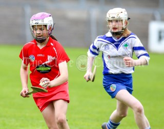 120619 Crusheens Aimee Colleran sets up another attack in the Camogie Division 2 final.Pic Arthur Ellis