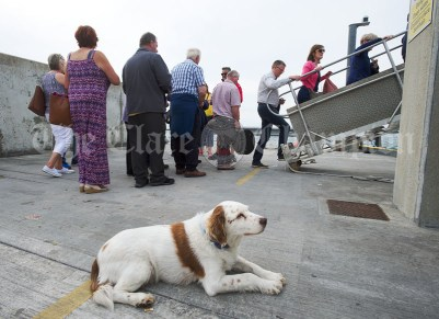 A dog keeps watch as passengers embark on the Romantic RNLI Cruise held in association with Bill O Brien's Doolin Ferry Company. Photograph by John Kelly