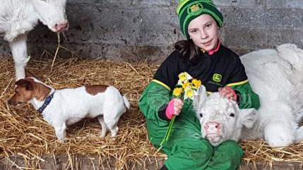 Elke (9 years) feeding her calves Paddy's morning