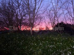 The sunset photo was taken from my back lawn in ruan.