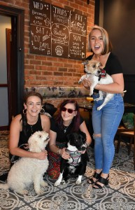 More dogs and hoomans at The Buttery.