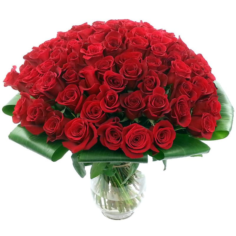 100 Red Roses Review  9510 Rating