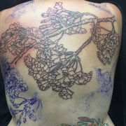 Work in Progress - Cherry Blossom & Fairy Wren Back Tattoo