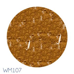 WM107