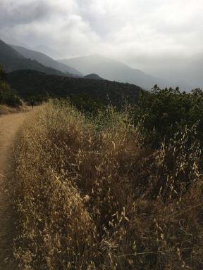 Claremont Wilderness Trail