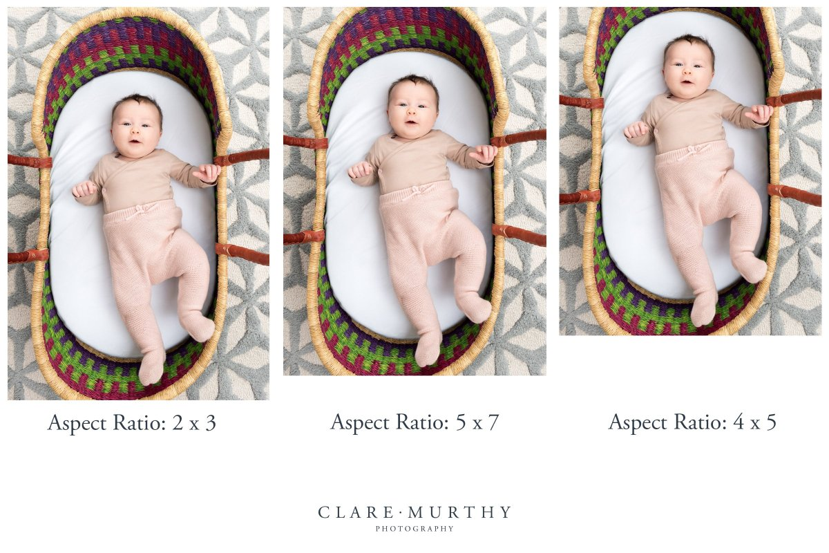 comparison of how different crops affect a photo