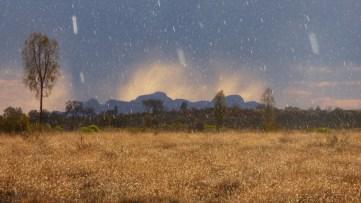 Yes - Rain in the Desert
