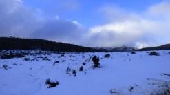 Mt Field National Park - Tasmania