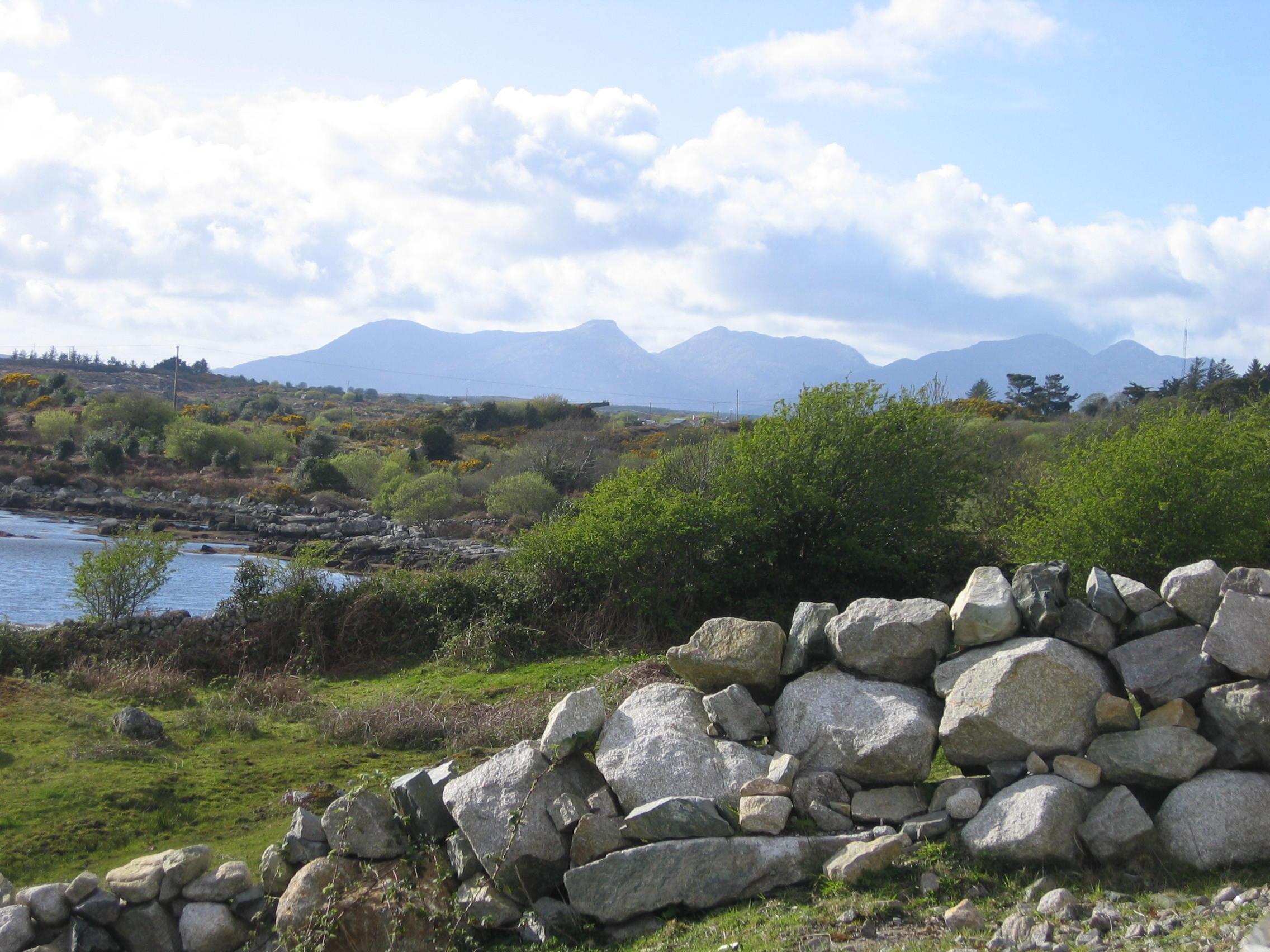 IMG_3561 Connemara