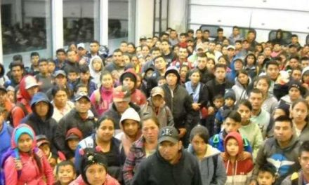 424 Migrants Apprehended at NM Border – Largest Single Group, Says BP