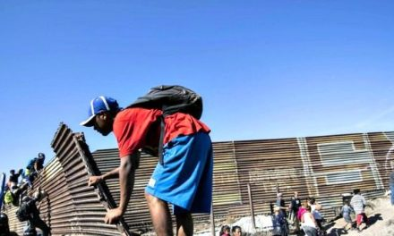 Jessica Vaughan: 7 Steps Trump Can Take to Solve Border Crisis