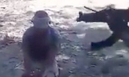 GRAPHIC VIDEO: Mexican Cartel Executes Rival near Beach Resort City