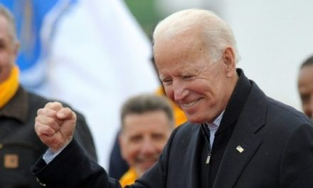 NH Poll: Biden Leads Crowded Democrat Pack, Best Bet to Beat Trump