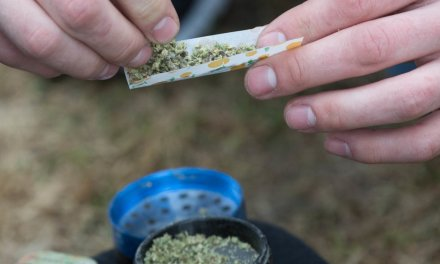 Pot use among young people rises in Canada after legalization, new report shows