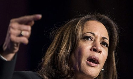 Kamala Harris: Biden Is 'Ignorant of the History of Race in this Country' | Breitbart