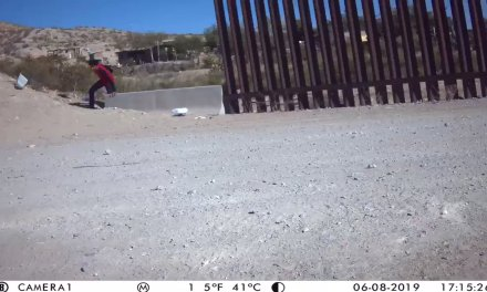 """Brian Kolfage on Twitter: """"BOMBSHELL: @WeBuildtheWall caught Illegals fleeing from border agents hours ago! 2 miles from our wall. ITS A DAMN CRISIS in sunland park New Mexico! These people didn't want to be caught.  @DonaldJTrumpJr @StumpforTrump @RyanAFournier @gehrig38 @Lrihendry  @realDonaldTrump… https://t.co/yytAg3et1V"""""""