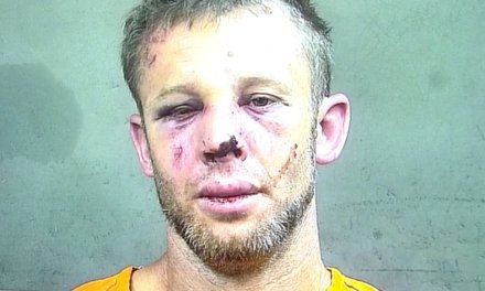 Kidnapping suspect tries to make off with a couple's 6-year-old granddaughter. He gets the beating of his life.