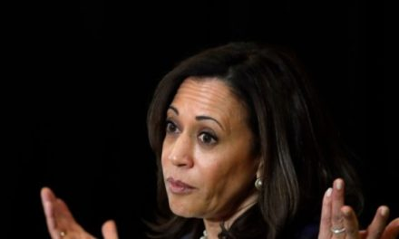 Kamala Harris Promises Opportunity, but Hides Indian Outsourcing Bill