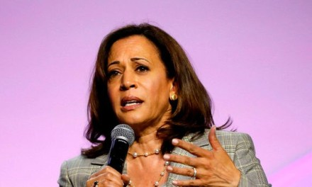Kamala Harris Pushes Gun Control Before Gilroy Shooting Details Known