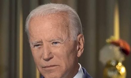 Biden: 'I Don't See Much' About What 'Holds Us Together' from Far Right, Breitbarts, and the Administration   Breitbart