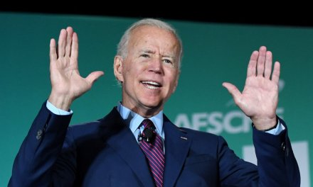 Joe Biden on whether his admin is 'going to come' for people's guns: 'Bingo'