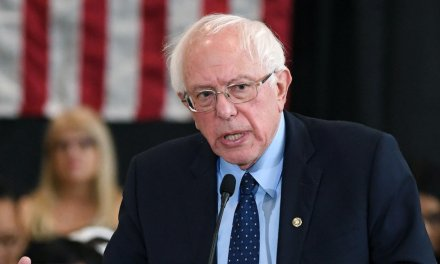 WATCH: Bernie Sanders admits '99.9 percent' of gun owners wouldn't even think of 'going around shooting people,' but says they will still have to 'make some concessions'