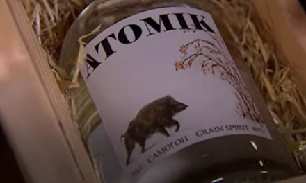 Scientists hope to sell vodka made from grain grown in Chernobyl's exclusion zone