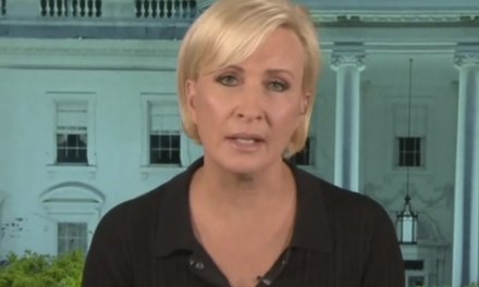 Mika Brzezinski calls mass killings a 'political issue' that 'Democrats could get some traction on'