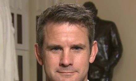 GOP Rep. Kinzinger: Treat All Political Extremist Violence as Terrorism, Raise Age to Buy Guns, Implement Universal Background Checks | Breitbart