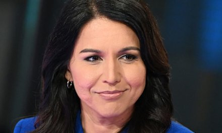 Tulsi Refuses To Shrivel Up In Freezing-Cold New Hampshire