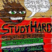 Study Hard Everyday