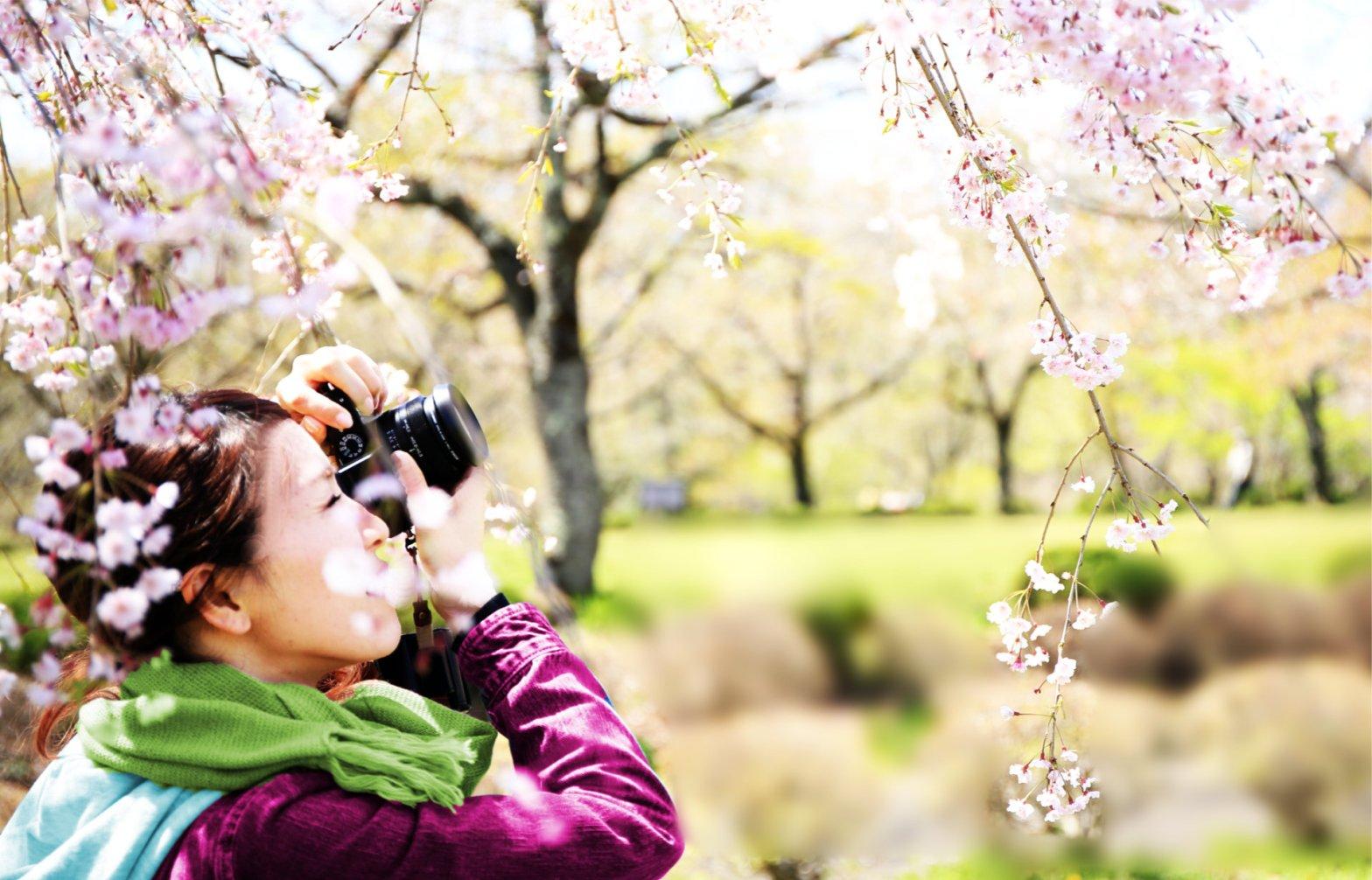 Japan girls online