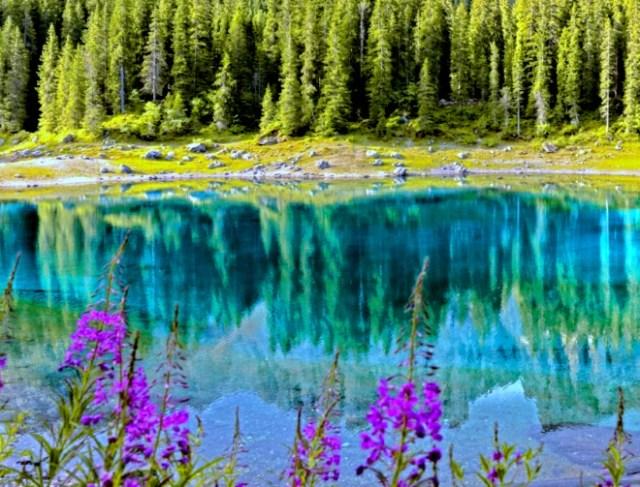 Be romantic -  emphasize nature