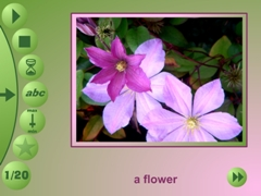 flower in language program