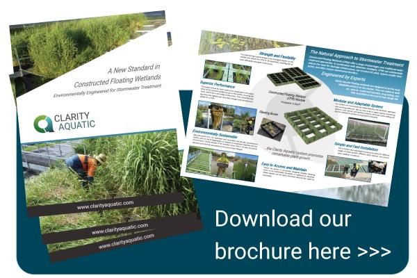 Download the Clarity Aquatic Brochure
