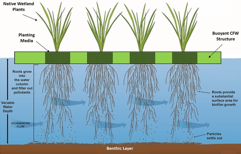 Constructed Floating Wetlands - How it Works