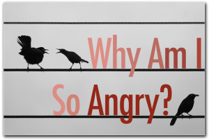 Why Am I So Angry? - Clarity
