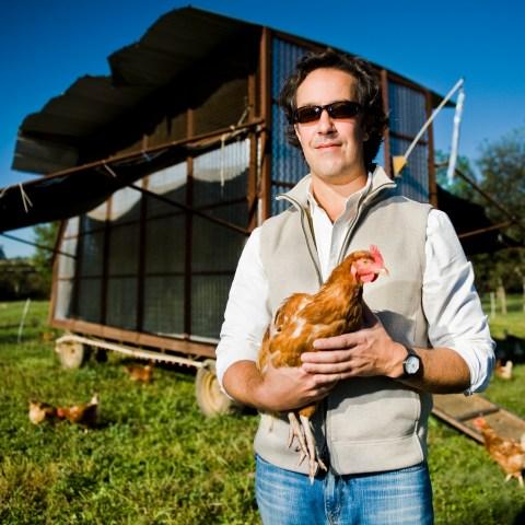 Local regulations may ban backyard chicken coops