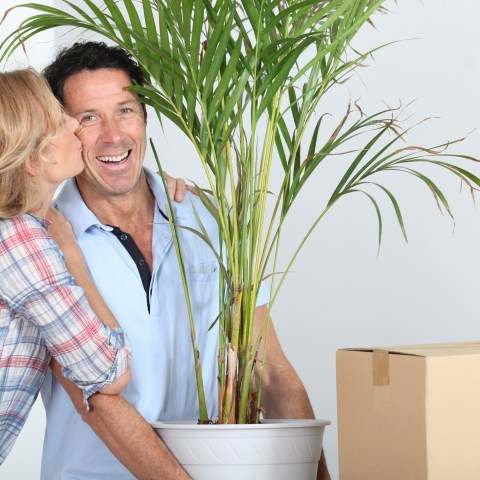 How to hire the best moving companies
