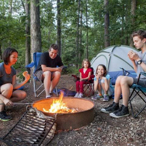 4 simple alternatives to mosquito repellent