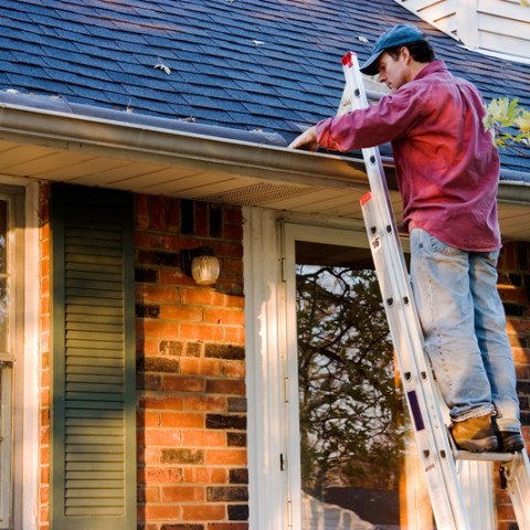 8 things homeowners need to do at least once a year