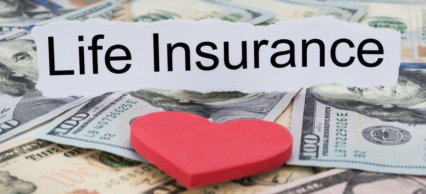 The top life insurers of 2016