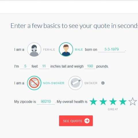 Ladder: A new option for online term life insurance quotes